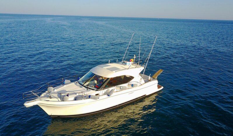 Usato Riviera Sport jacht sy 3600 Motore